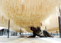 طرح توجیهی تولید رشته آشی و پلویی به ظرفیت 360 تن در سال