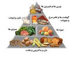 دانلود تحقیق بیوشیمی مواد غذایی و تغذیه انسانی